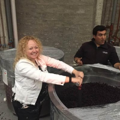 Making the Malbec in Mendoza after choosing the grapes